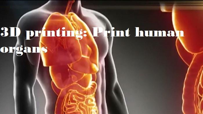 3D printing: to print human organs really?